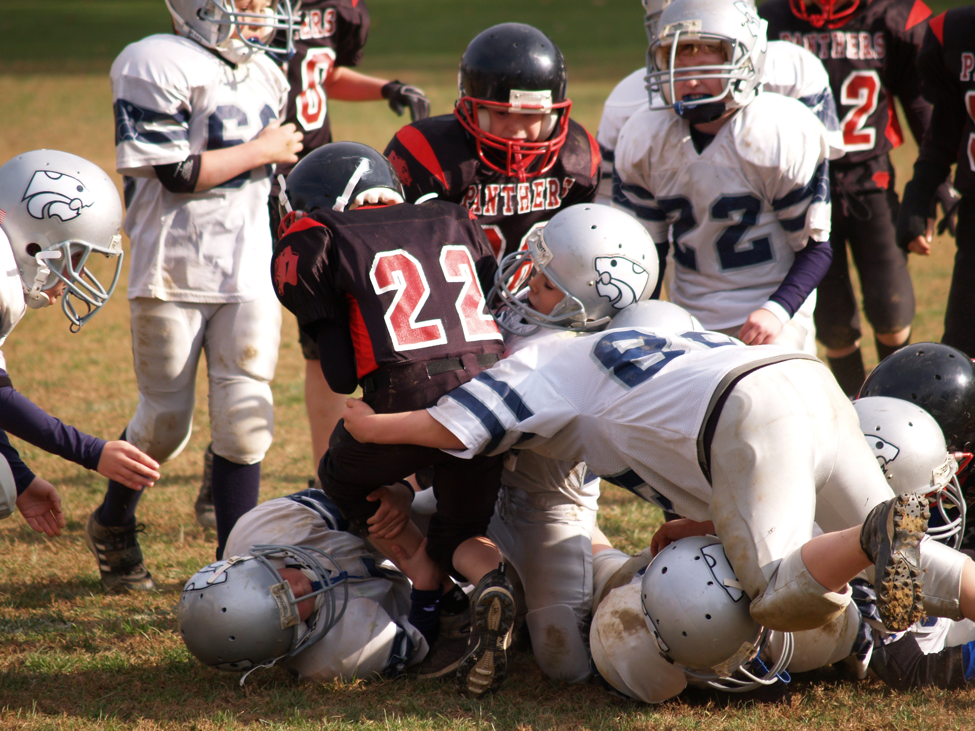 After Concussion Athletes May Need >> A Drink To Protect Athletes Brains